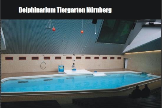 vorstellungszeiten im delphinarium nürnberg