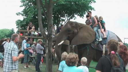 Elefantenreiten in einem deutschen Tierpark